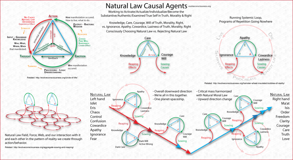 Natural-Law-Causal-Agents