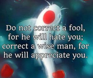 mistakes-correction-fools-wisdom