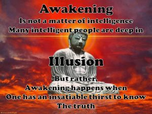 seek-truth-awakening