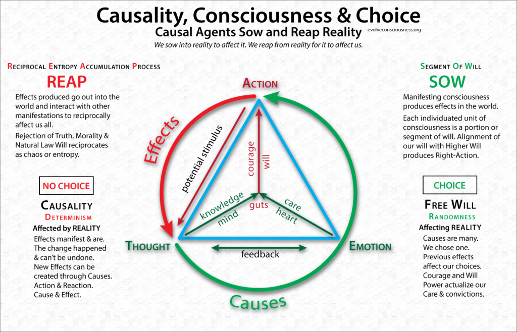 Causality-Consciousness-Choice