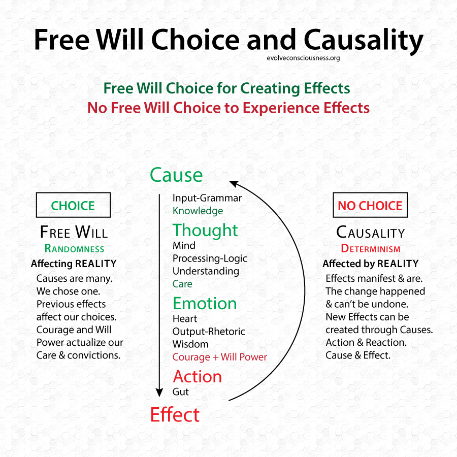Free-Will-Choice-Causality