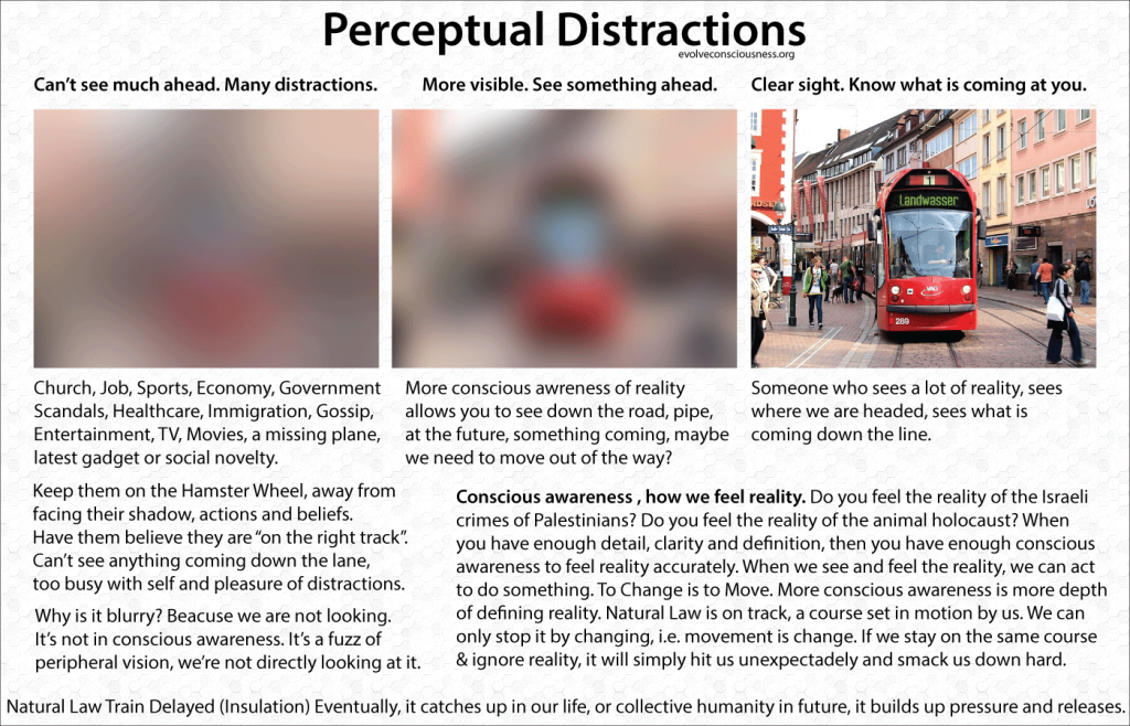 Perceptual-Distractions