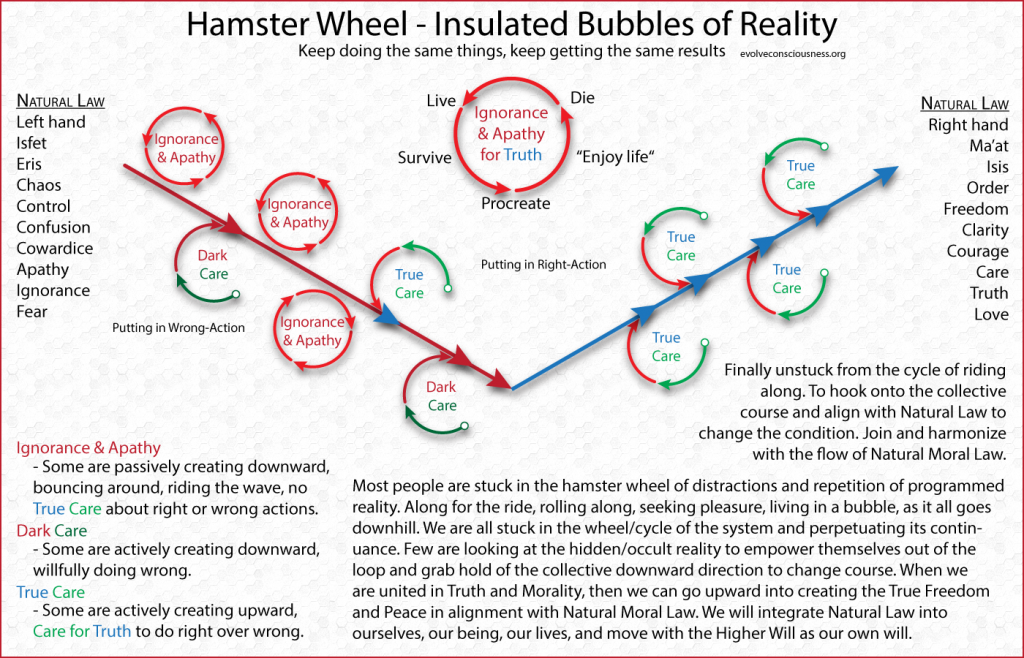 Hamster-Wheel-Insulated-Bubbles-of-Reality