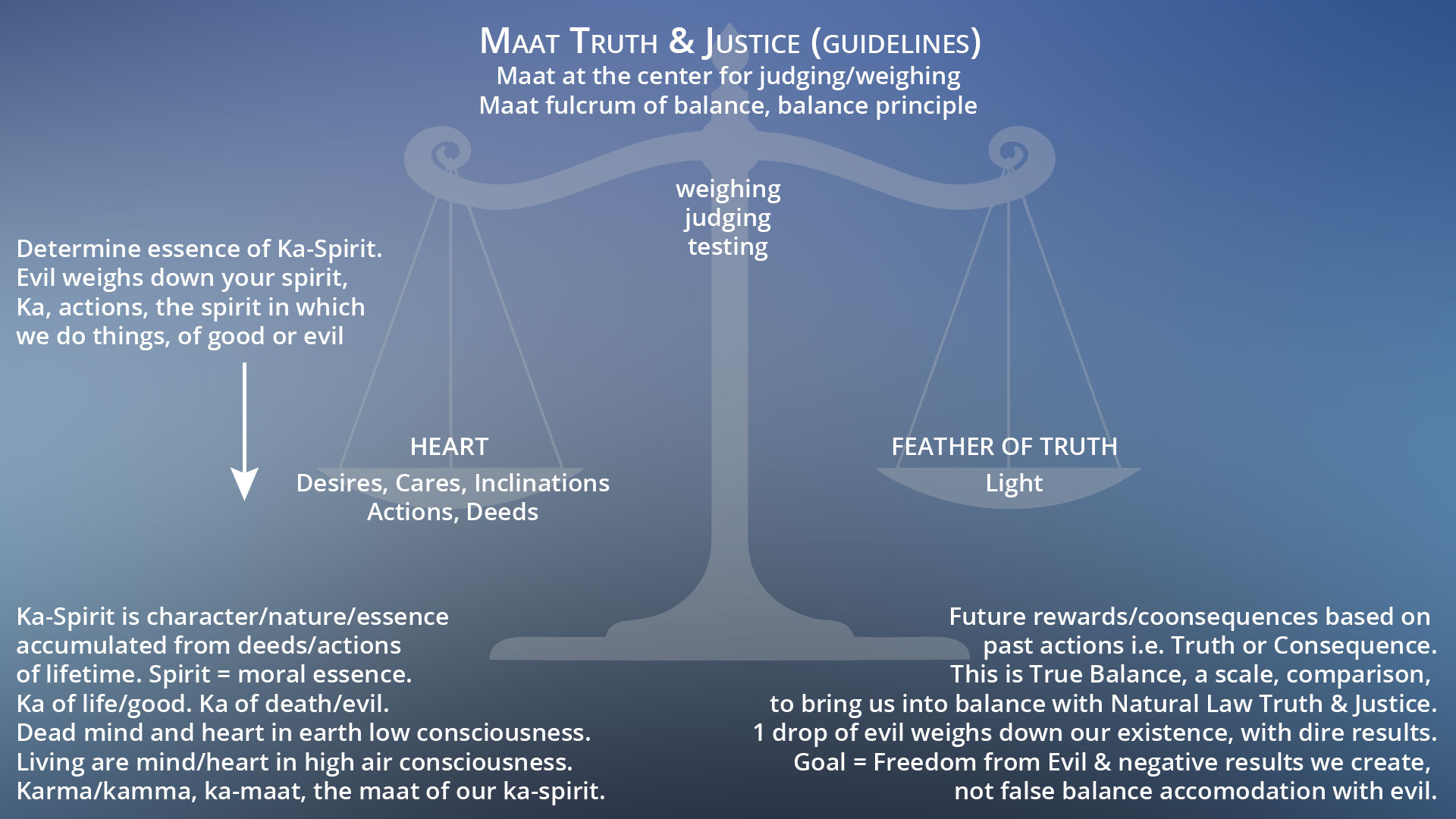 the truth about lawyers essay
