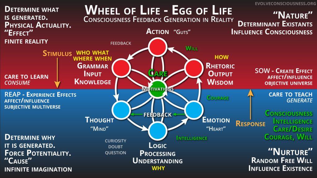 Wheel-of-Life-Feedback-Generation