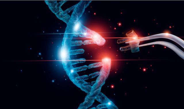crispr genes
